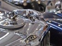 springende Raubkatze von Jaguar